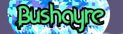 Bushayre